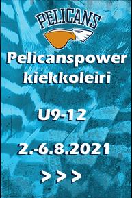 Pelicanspower