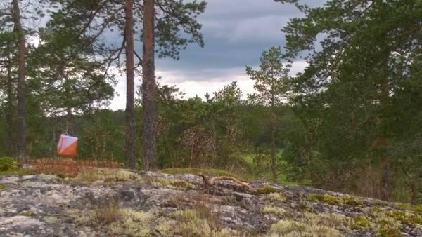 AM-Erikoispitkä ja junnusuunnistus 30.6.2021 (TULOKSET JA VÄLIAJAT)