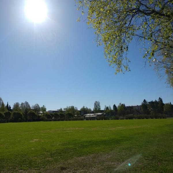 Kesän nurmivuorot