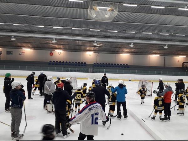 Leijonakiekkokoulu 2016 syntyneille Pojille ja Tytöille, Projekti 100 +
