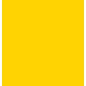 Rauman Lukko ry