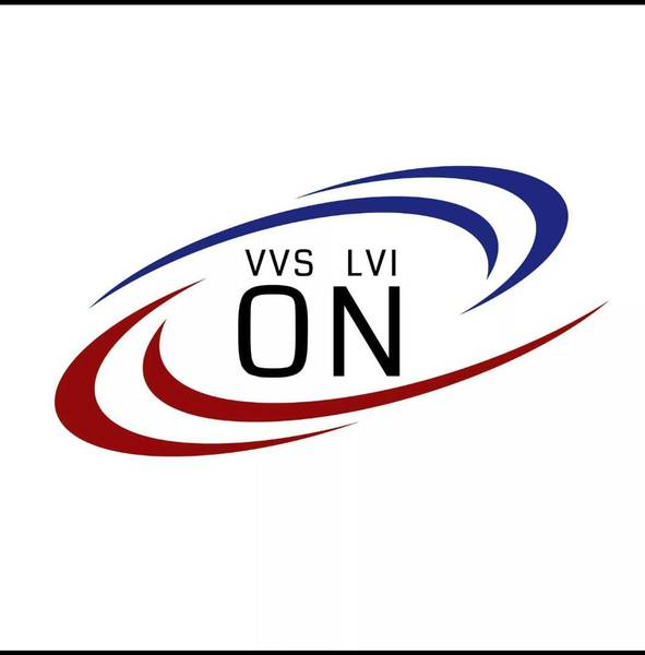 VVS LVI ON